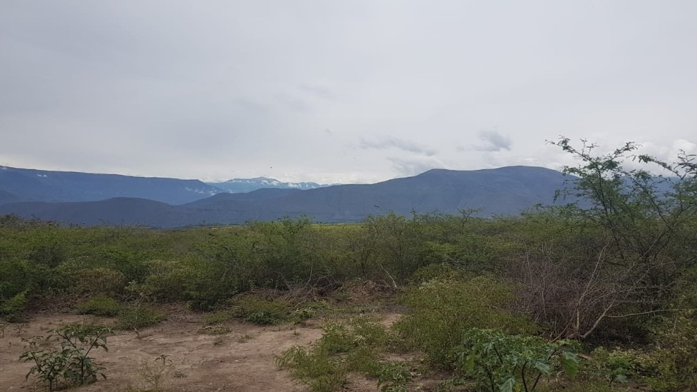 terreno ideal para  fraccionar 10 lotes de 25000 metros.