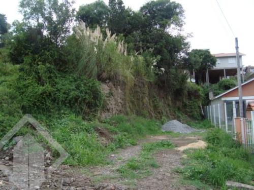 terreno - imigrante - ref: 118659 - v-118659