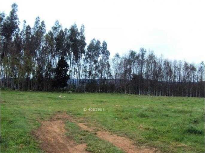 terreno industrial 1