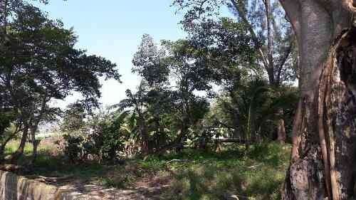 terreno industrial en venta, hidroeléctrica, col. trópico de la rivera