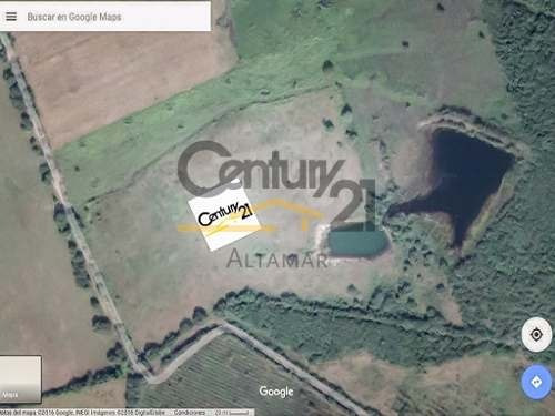 terreno industrial en venta, predio las gallinas, altamira, tamaulipas.