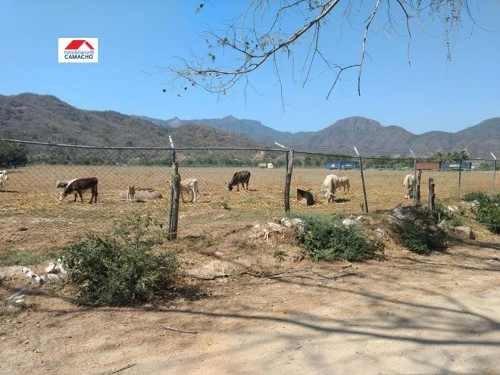 terreno industrial en venta venta; 7.5 hectáreas de uso industrial en colomos, manzanillo, colima