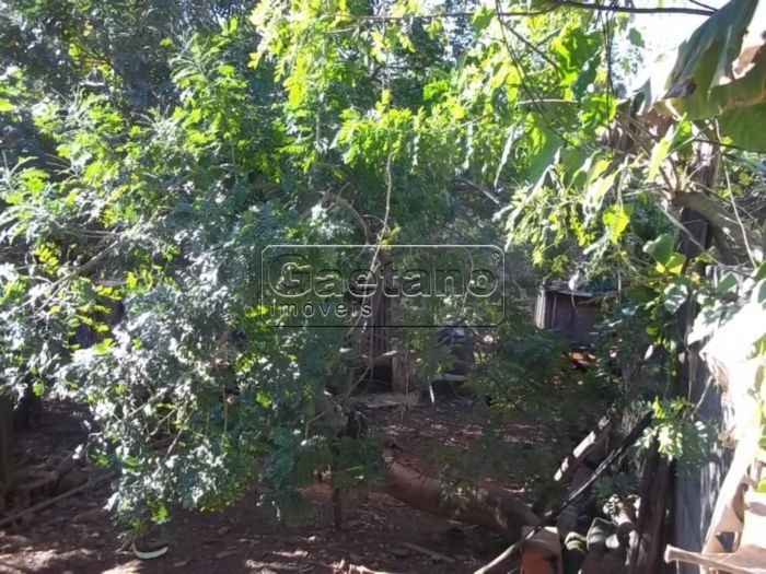 terreno - jardim iv centenario - ref: 15739 - v-15739