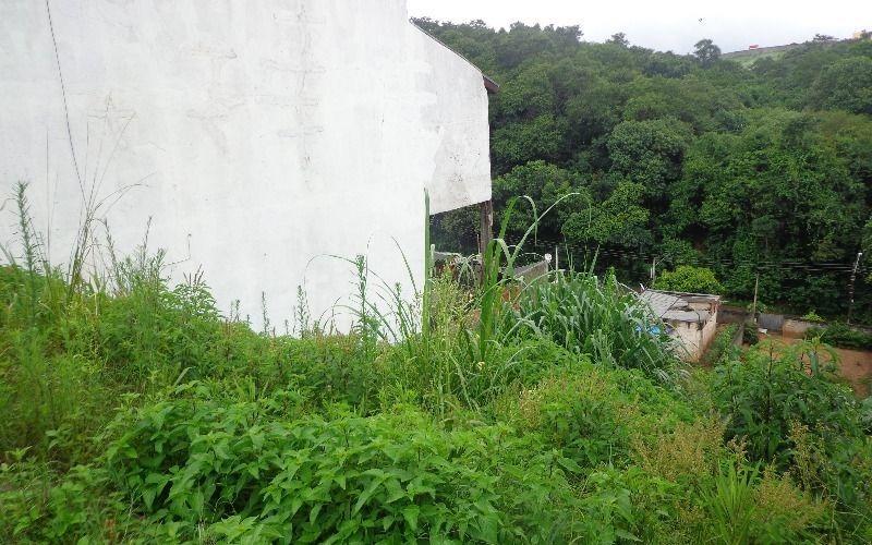 terreno - jardim  vitoria - campo limpo paulista/sp