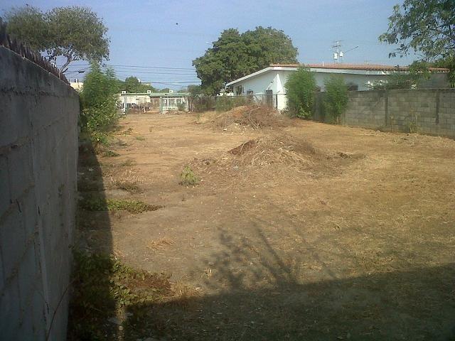 Terreno jardin 700 metros cuadrados bs en for Jardines 300 metros cuadrados