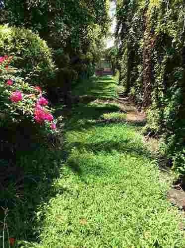 terreno jardín en venta morelos