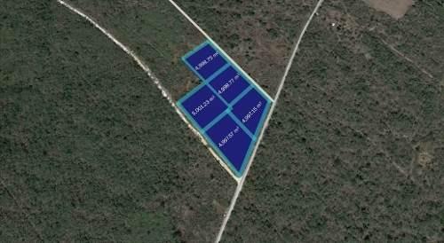 terreno kanasín  todo o en partes cerca cedis wallmart 160 m. sobre carretera