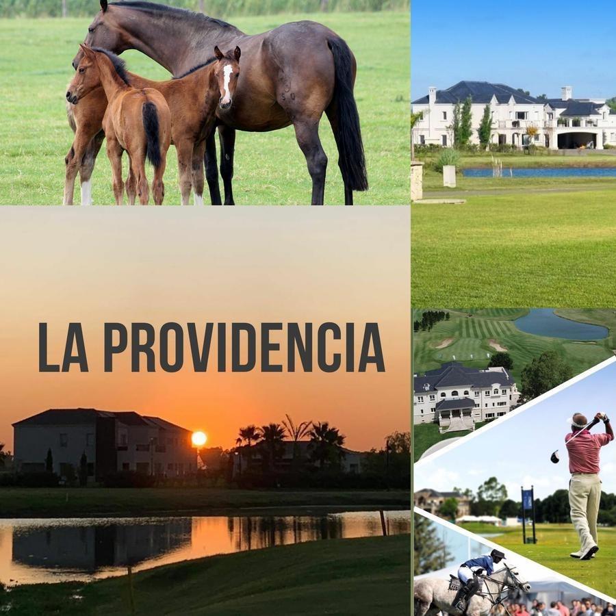 terreno - la providencia