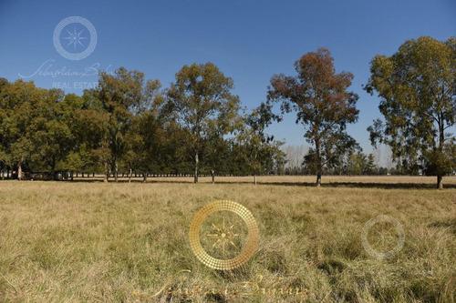 terreno - lares de canning