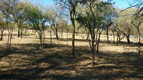 terreno - las tapias