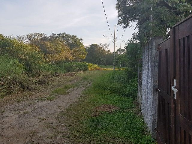 terreno limpo e plano em itanhaém 400 mts rodovia