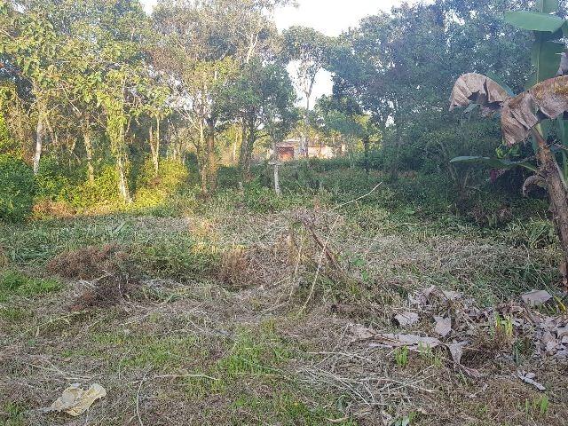 terreno limpo, em itanhaém 400 metros da rodovia