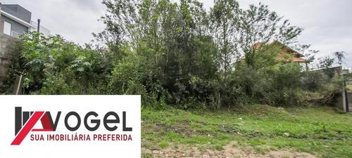 terreno  localizado(a) no bairro dom feliciano em gravatai / gravatai  - 3201985