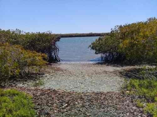 terreno lópez mateos beachfront