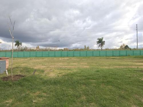terreno - los castaños