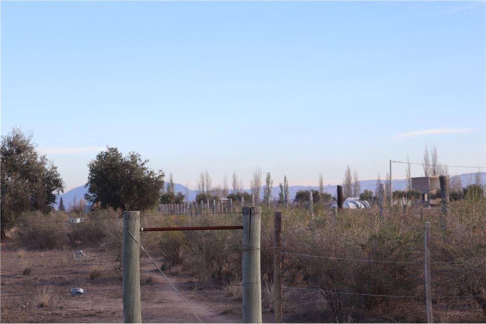 terreno los filtros san rafael 3000 mts