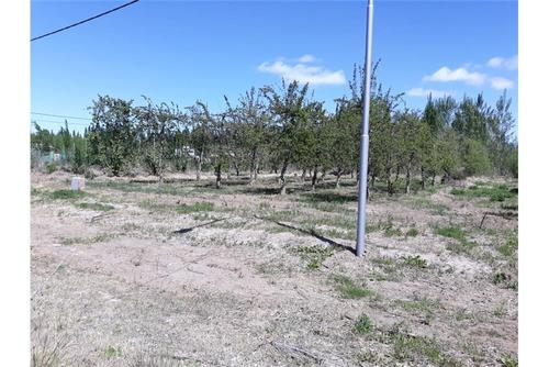 terreno los manzanos