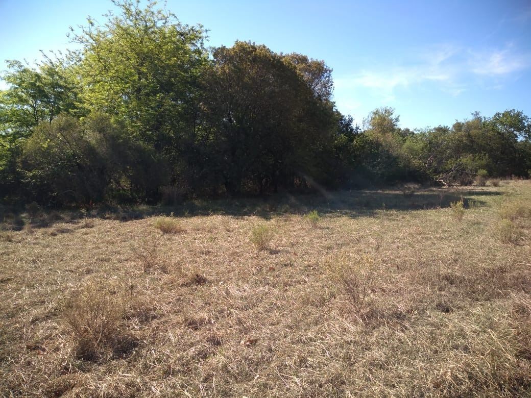 terreno lote 1ha en yacanto san javier traslasierra
