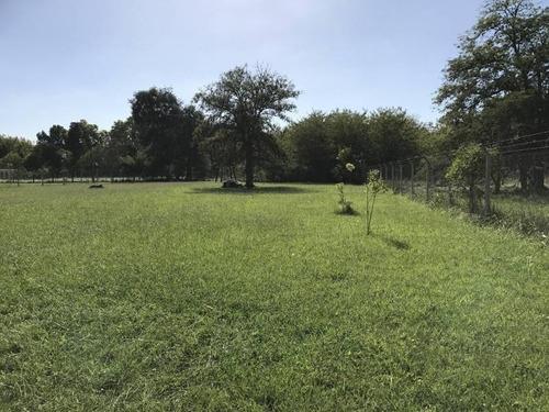 terreno lote en venta 3000 m2 tierras de morenito (vendido)