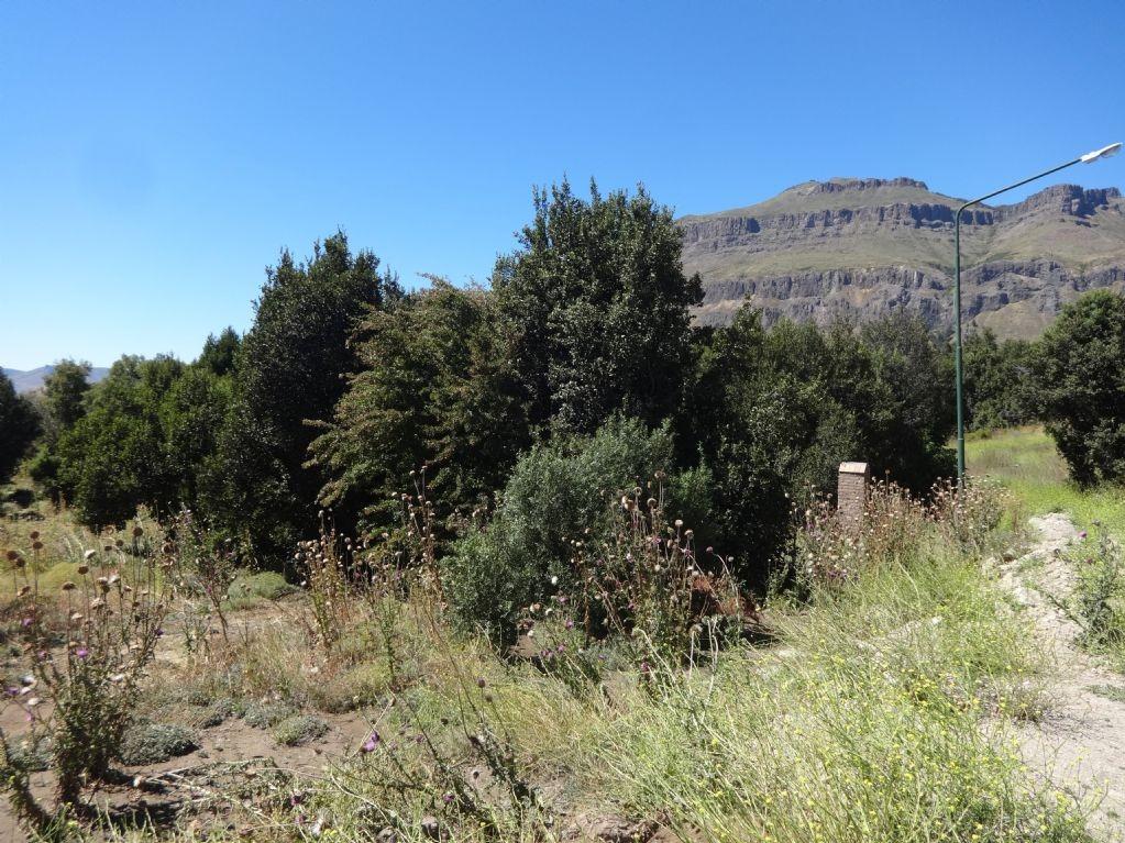 terreno lote  en venta ubicado en faldeo del chapelco, san martin de los andes