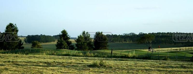 terreno lote  en venta ubicado en la barra, punta del este
