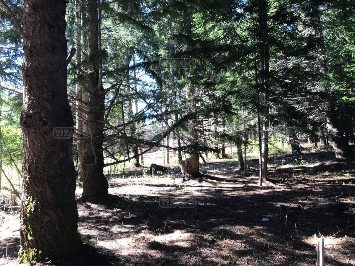 terreno lote  en venta ubicado en parque mapuche, bariloche