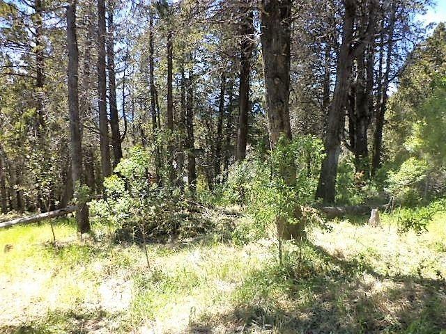 terreno lote  en venta ubicado en pinar de festa, bariloche