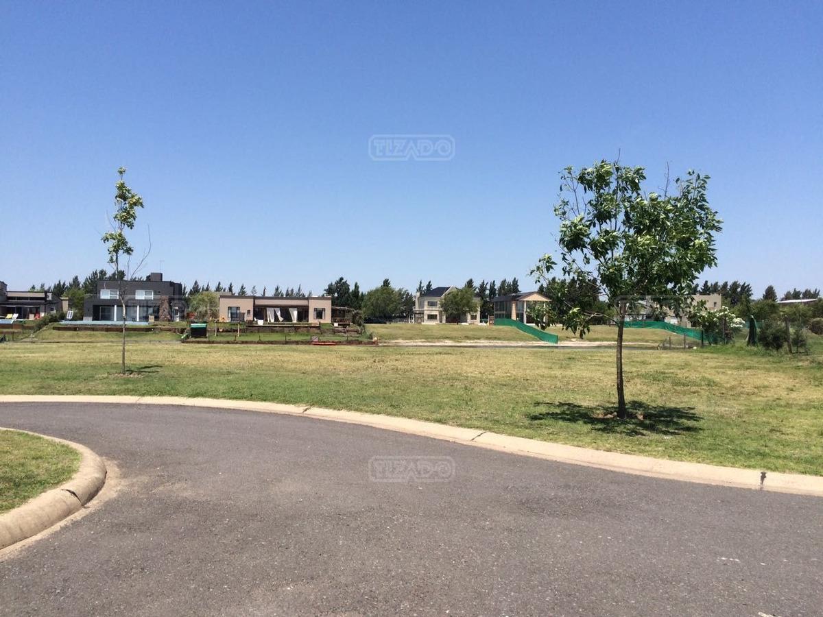 terreno lote  en venta ubicado en san benito, villanueva