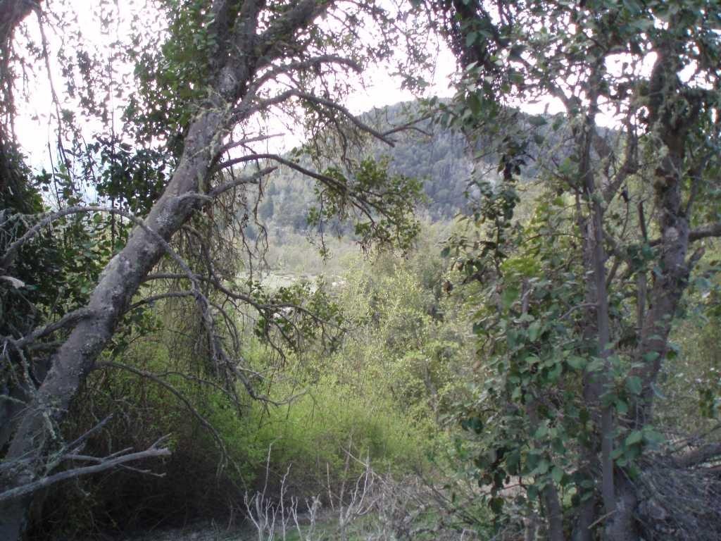 terreno lote  en venta ubicado en vallescondido, san martin de los andes