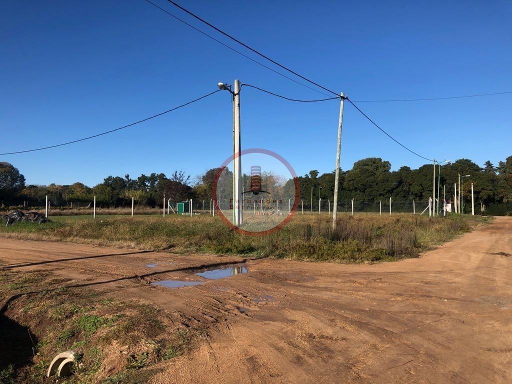 terreno lote  en venta ubicado en villa elvira, la plata