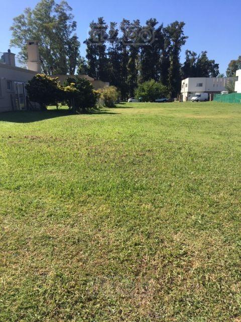 terreno lote  en venta ubicado en weston, zona oeste