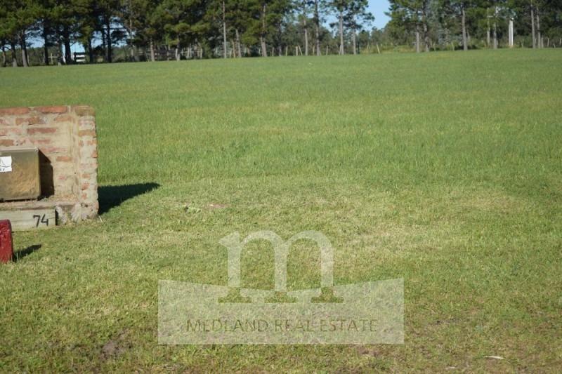 terreno lote venta el quijote chacras-ref:145