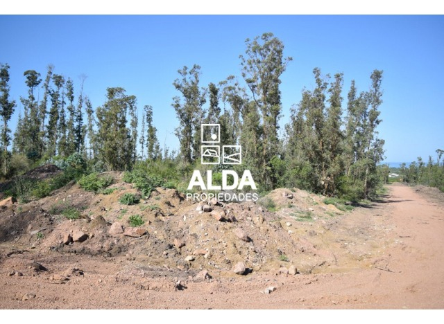 terreno maldonado piriápolis venta te201491-9
