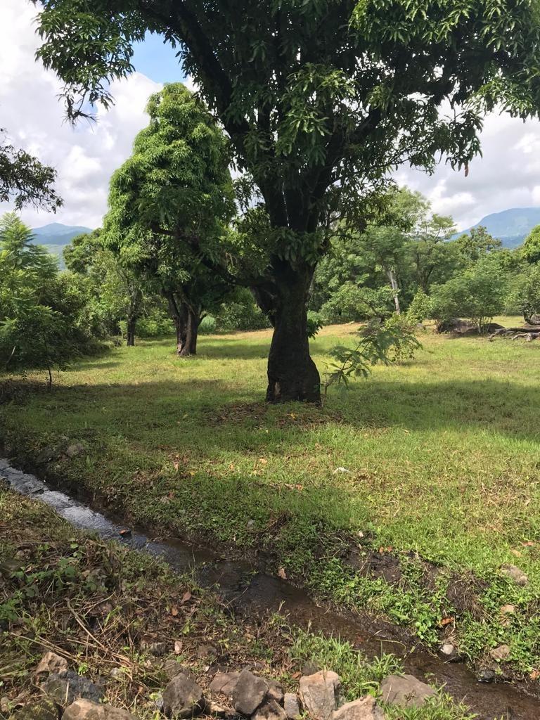 terreno malinalco estado de mexico 4,200 m2
