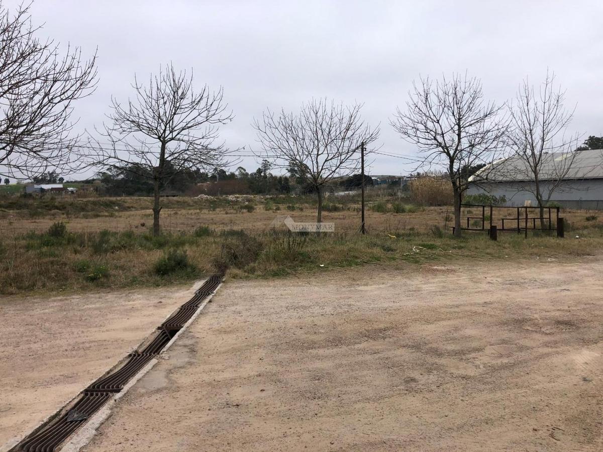 terreno malvin norte alquiler explanada diversos metrajes sin garantía martin usabiaga sala