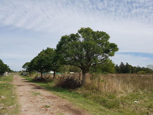 terreno - manuel b gonnet