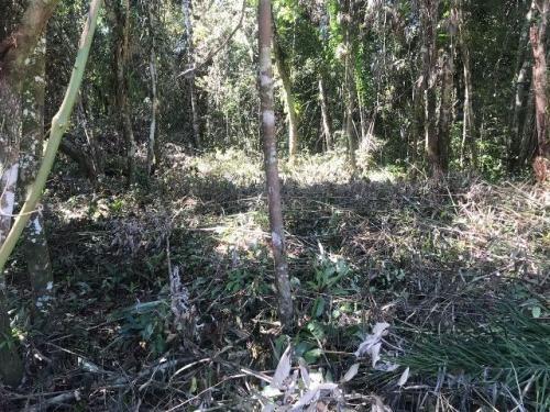 terreno medindo 415 m² em itanhaém-sp - ref 4028-p