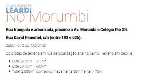 terreno morumbi  - são paulo - ref: 231524
