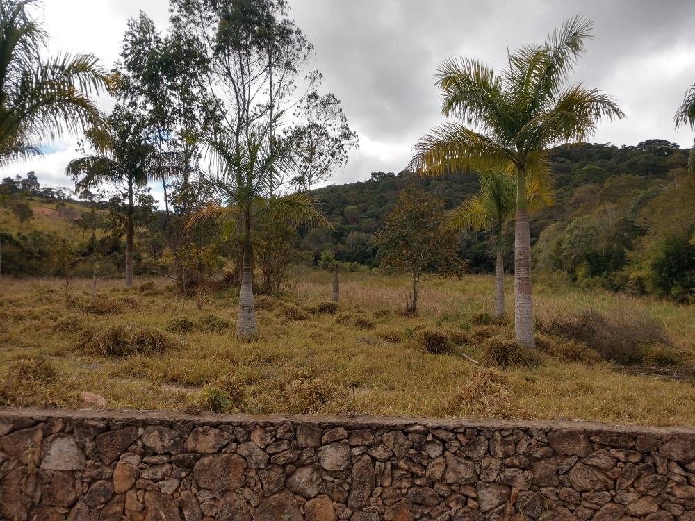 terreno na fazenda dos braga caeté mg