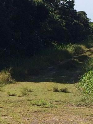 terreno na praia,medindo 420m²,em itanhaém/sp