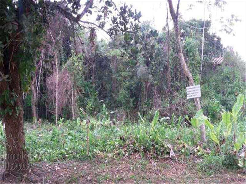 terreno no bairro itamambuca ubatuba - vte187
