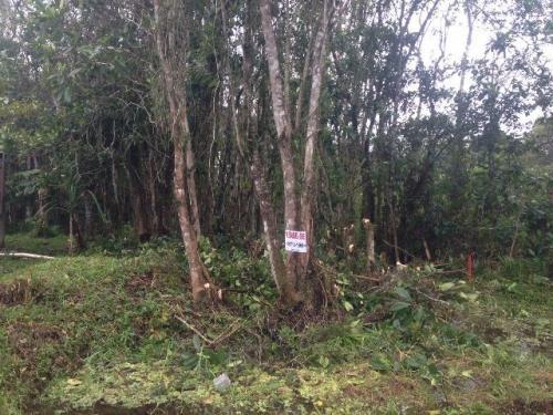 terreno no jardim coronel 3199