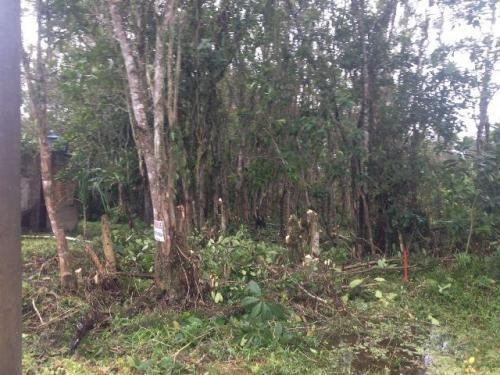 terreno no jardim coronel com 300 m², itanhaém-sp