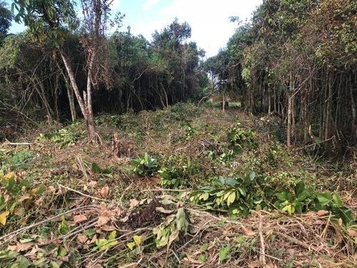 terreno no jardim das palmeiras, 1,5 km do mar, aproveite!!!