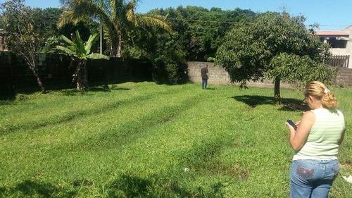 terreno no jardim palmeiras 4076