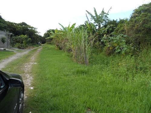 terreno no jardim palmeiras, em itanhaém - ref 2846