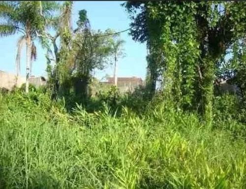 terreno no jardim palmeiras, em itanhaém - ref 3907