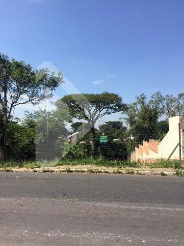 terreno - nossa senhora das gracas - ref: 183372 - v-183372