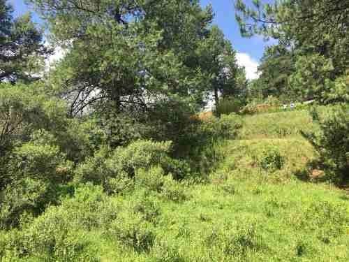 terreno oportunidad con servicios en municipio de jilotzingo
