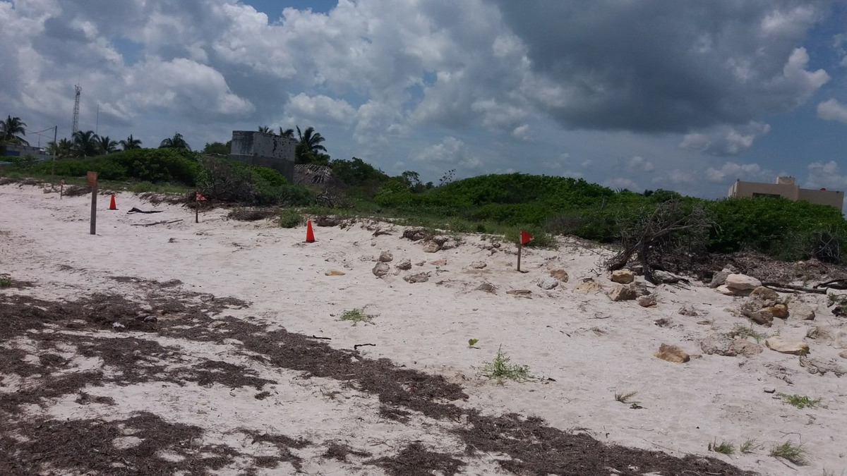 terreno  orilla de la playa.